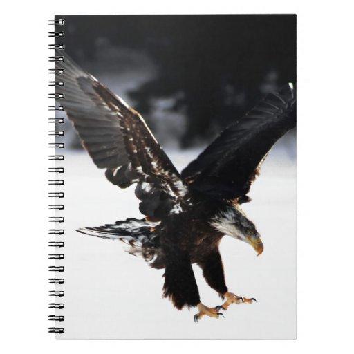 Eagle calvo libro de apuntes con espiral