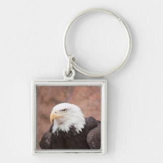 Eagle calvo - llavero