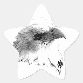 Eagle calvo majestuoso Grabado de Digitaces de la Calcomania Forma De Estrella Personalizada