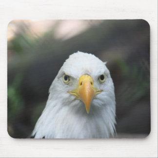 Eagle calvo Mousepad Alfombrillas De Ratón