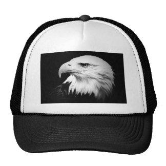 Eagle calvo negro y blanco gorro