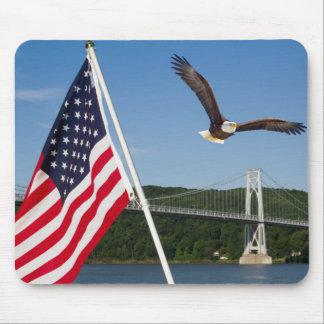 Eagle calvo (orgullo americano) tapetes de ratón