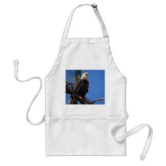 Eagle calvo - pájaro nacional de los Estados Unido Delantal
