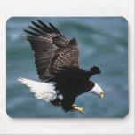 Eagle calvo - pájaro nacional de los Estados Unido Tapete De Ratón