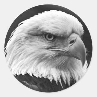 Eagle calvo pegatina redonda