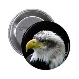 Eagle calvo pin redondo de 2 pulgadas