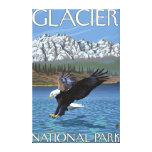 Eagle calvo que se zambulle - Parque Nacional Glac Impresión En Tela
