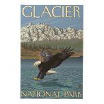 Eagle calvo que se zambulle - Parque Nacional Cuadros De Madera