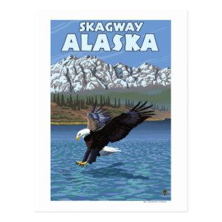 Eagle calvo que se zambulle - Skagway, Alaska Postales