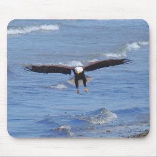 Eagle calvo que viene adentro para un aterrizaje alfombrillas de ratones
