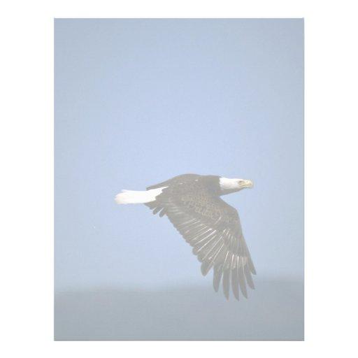 Eagle calvo que vuela a través de horizonte membretes personalizados