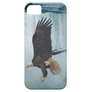 Eagle calvo que vuela en el caso del iPhone 5 de iPhone 5 Fundas