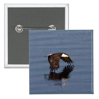 Eagle calvo que vuela pin cuadrado