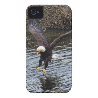 Eagle calvo que vuela que pesca en la caja costera Case-Mate iPhone 4 cobertura