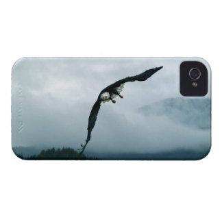 Eagle calvo que vuela y árboles brumosos 2, caja Case-Mate iPhone 4 cárcasas