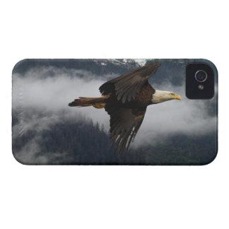 Eagle calvo que vuela y caja brumosa de Blackberry iPhone 4 Funda