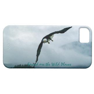 Eagle calvo que vuela y caso brumoso del iPhone 5 iPhone 5 Funda