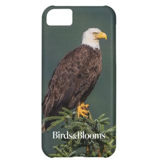 Eagle calvo real funda iPhone 5C