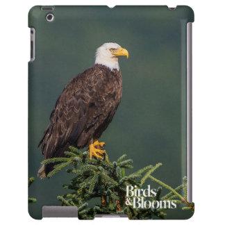 Eagle calvo real funda para iPad