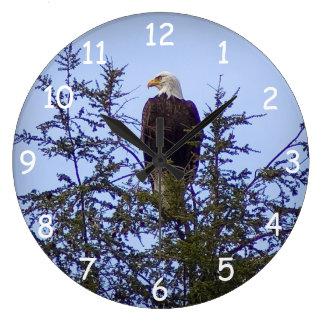 Eagle calvo reloj redondo grande