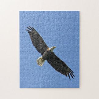 Eagle calvo rompecabezas