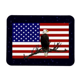 Eagle calvo siempre vigilante imán foto rectangular
