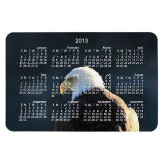 Eagle calvo solitario; Calendario 2013 Iman Flexible