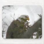 Eagle calvo tapete de raton