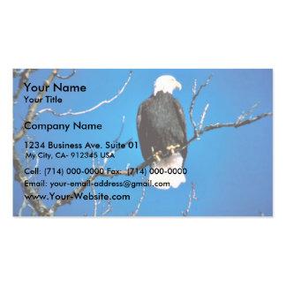Eagle calvo tarjetas de visita