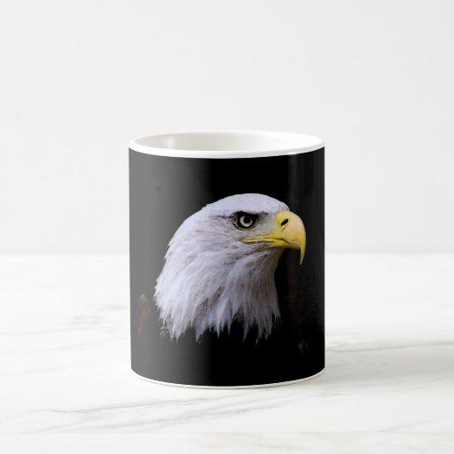 Eagle calvo tazas de café