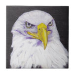 Eagle calvo teja  ceramica
