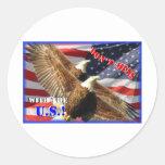 Eagle calvo y bandera de los E.E.U.U. Etiquetas Redondas