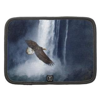 Eagle calvo y caja del folio de la cascada organizadores