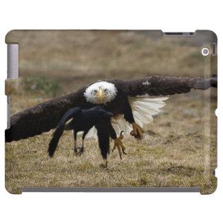 Eagle calvo y fauna de la caza del cuervo