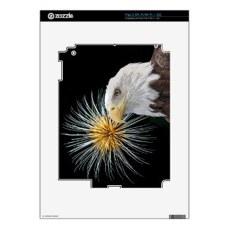 Eagle calvo y fuegos artificiales iPad 2 skin