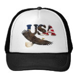Eagle calvo y gorra americano de la serie del patr