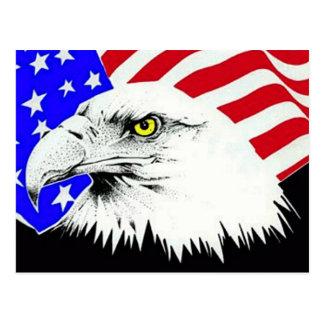 Eagle calvo y postal de la bandera americana