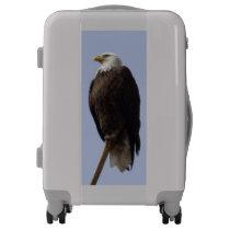 Eagle Carryon Luggage