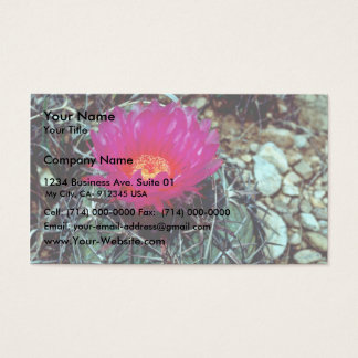 Eagle Claw Cactus Business Card