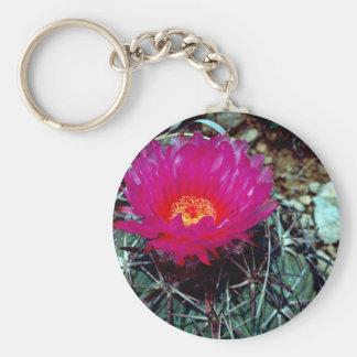 Eagle Claw Cactus Key Chains