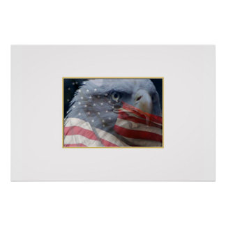 Eagle Close up with Flag Poster