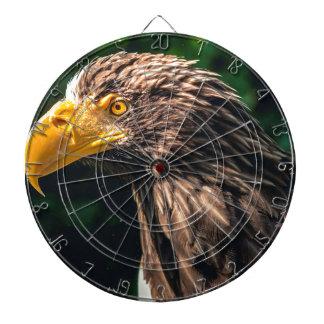 Eagle Closeup Dartboard
