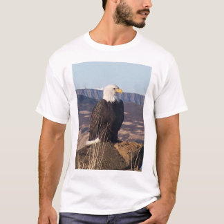 Eagle closeup overlooking Sand Point Harbor 1-9-5 T-Shirt
