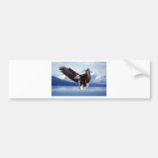 Eagle de Alaska en vuelo Pegatina De Parachoque