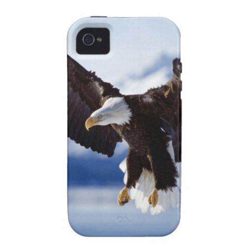 Eagle de Alaska en vuelo iPhone 4/4S Carcasas