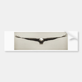 Eagle de frente en sepia etiqueta de parachoque