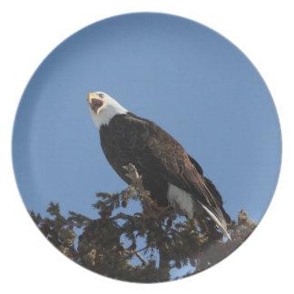 Eagle de griterío platos para fiestas