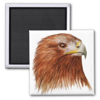 Eagle de oro 2011 imán cuadrado