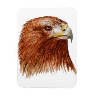 Eagle de oro 2011 iman de vinilo
