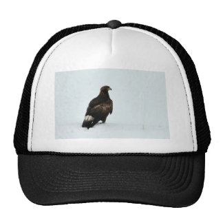 Eagle de oro gorros bordados